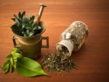 Új honlap a gyógynövényekről
